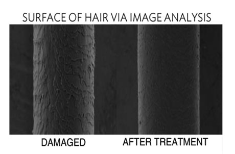 damaged hair treated with omniplex